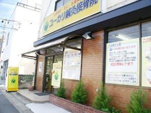 市川市 京成八幡駅 ユーカリ鍼灸接骨院